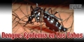Dengue en Los Cabos