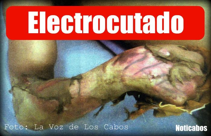 Pierde hasta la piel al querer robar electricidad noticabos - Cables de electricidad ...