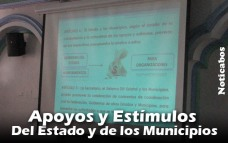 proyecto-ley-fomento-006