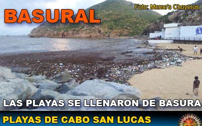 playas en cabo san lucas: Foro de Cabo San Lucas en