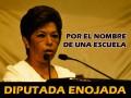 Diputada Marisela Ayala Elizalde