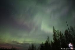 Aurora en Alaska
