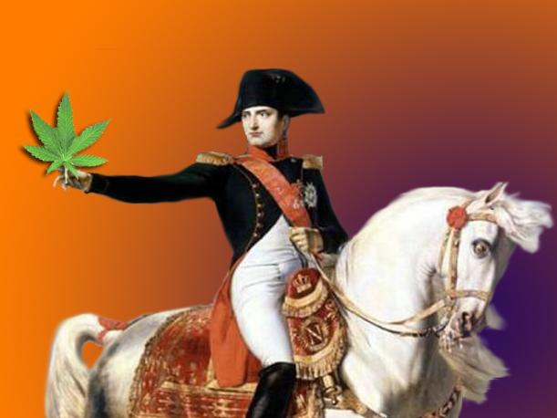 napoleon-marihuana