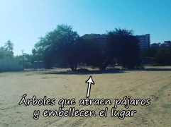 parque-escondido-009