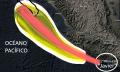 formacion-ciclonica-2016-08-06