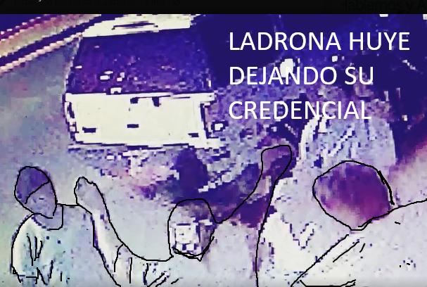 ladrona-credencial