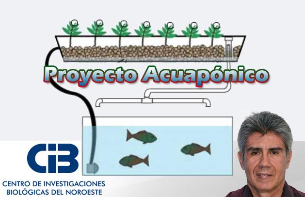 Proyecto-Acuaponico